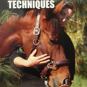 Basic Massage Techniques DVD