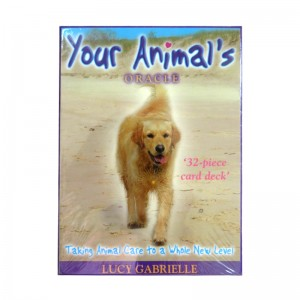 Your Animal's Oracle Cards