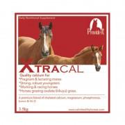 XtraCal 121115