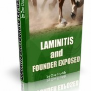 Laminitis & Founder Ebook