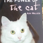 The Power Of The Cat