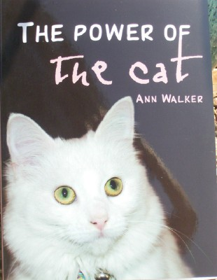 The Power Of The Cat 1