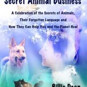 Secret Animal Business