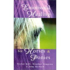 Emotional Healing For Horses 1