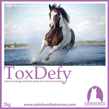 Calm Healthy Horses ToxDefy