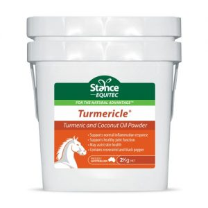 Turmericle powder