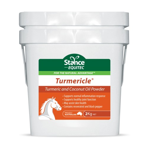 Turmericle powder