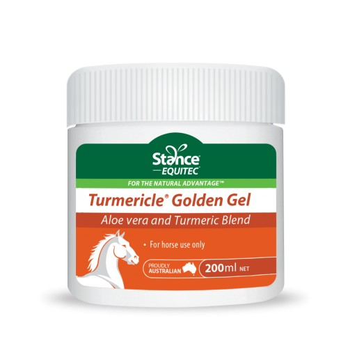 Turmericle golden gel