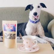 kiss-me-doggie-tea-for-dogs_1024x1024