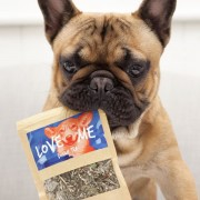 love-me-doggie-tea-tea-for-dogs_1024x1024