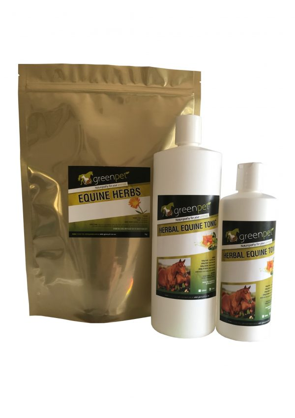 Herbal Equine Paneze Support